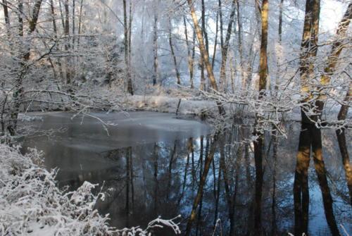 Winter Wasser Licht
