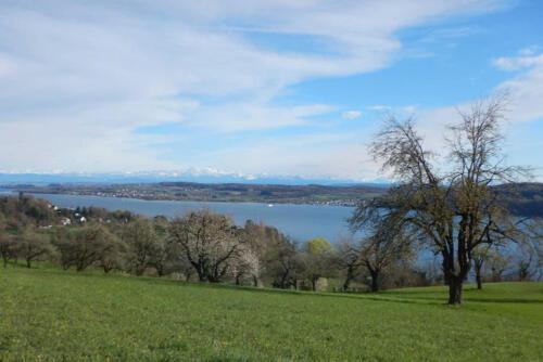 Blick auf den Bodensee von Hödingen bei Überlingen